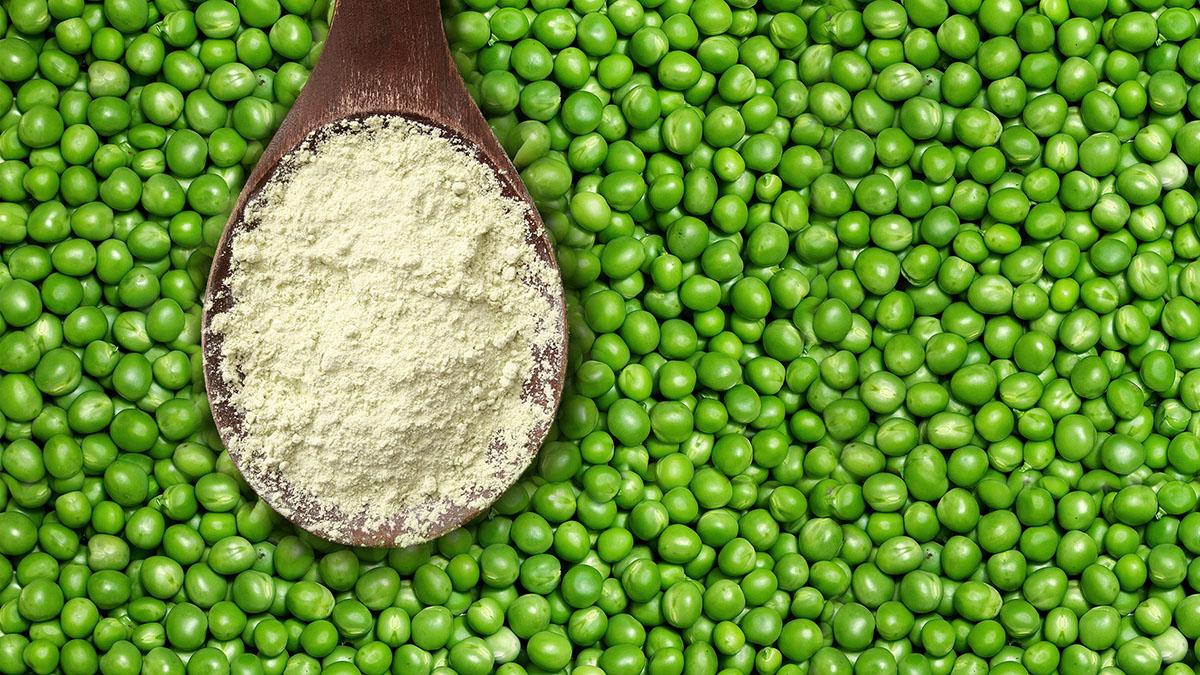 грахов протеин ползи